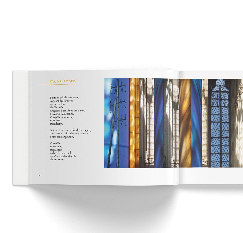 livre d'Yves Phelippot